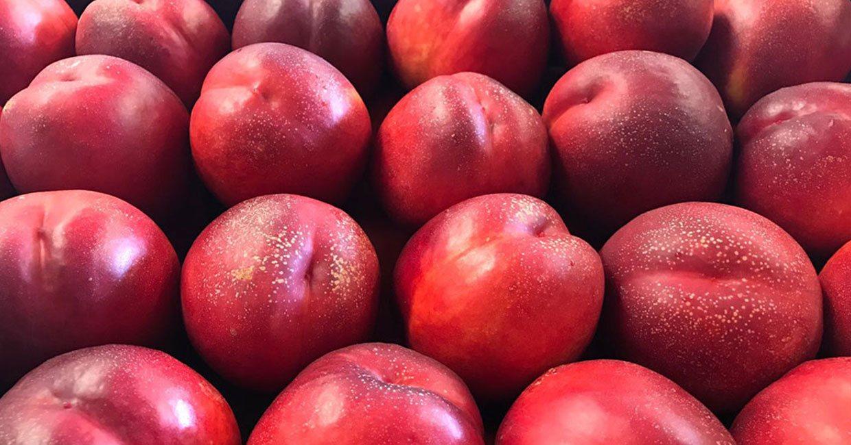 Ingrosso Ortofrutta Aste Frutta